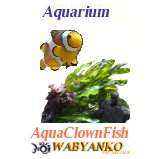 Aqua Clown Fish